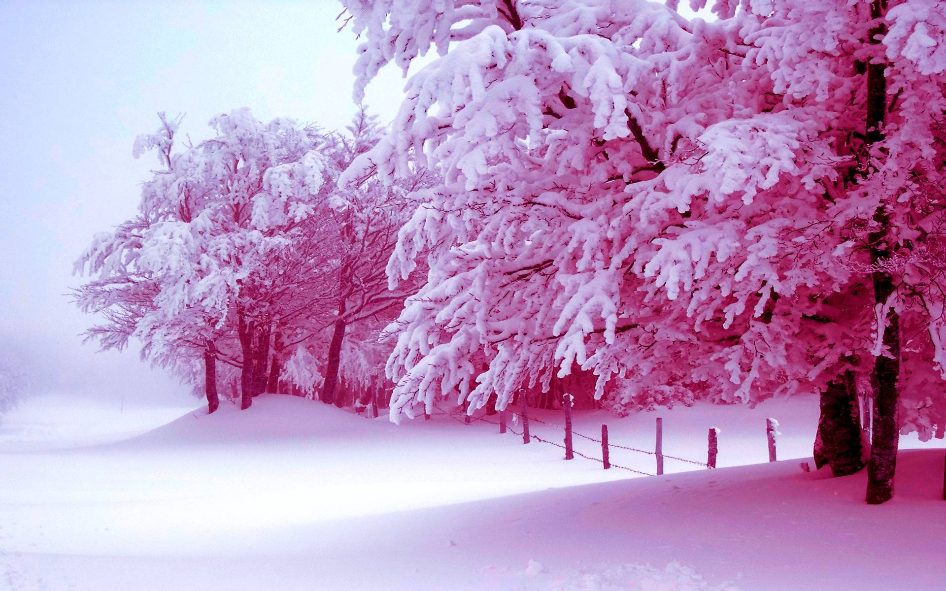 pink snow mountain wallpaper - photo #33