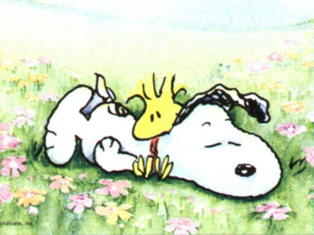 Snoopy wallpaper - Snoopy Wallpaper (33124728) - Fanpop