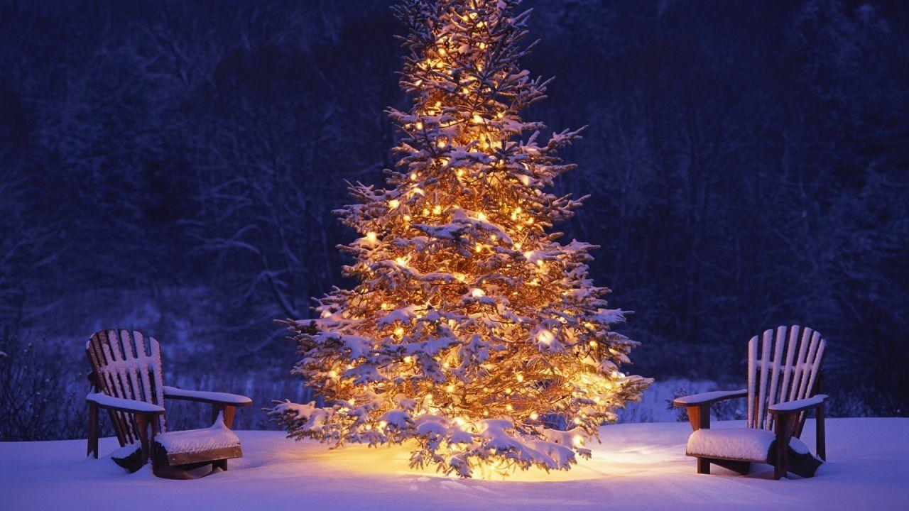 Read Online 1280x720 Christmas Tree In Snow Wallpapers Download