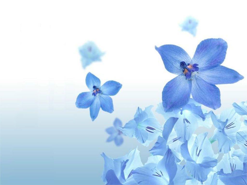 Flower wallpapers wallpaper cave flower wallpaper for macbook and windows flower arrangement ideas voltagebd Gallery