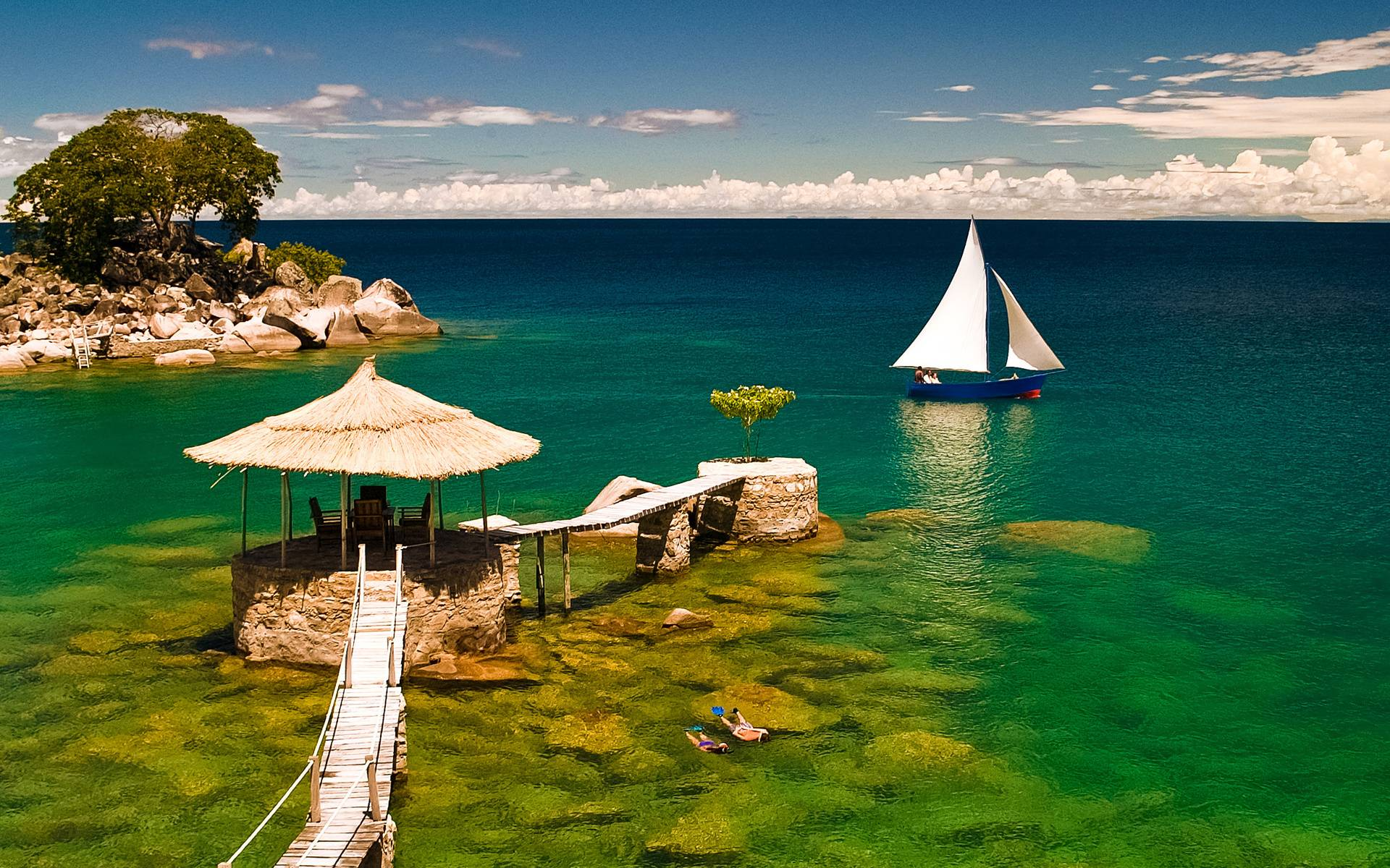 20 tropical backgrounds - photo #24