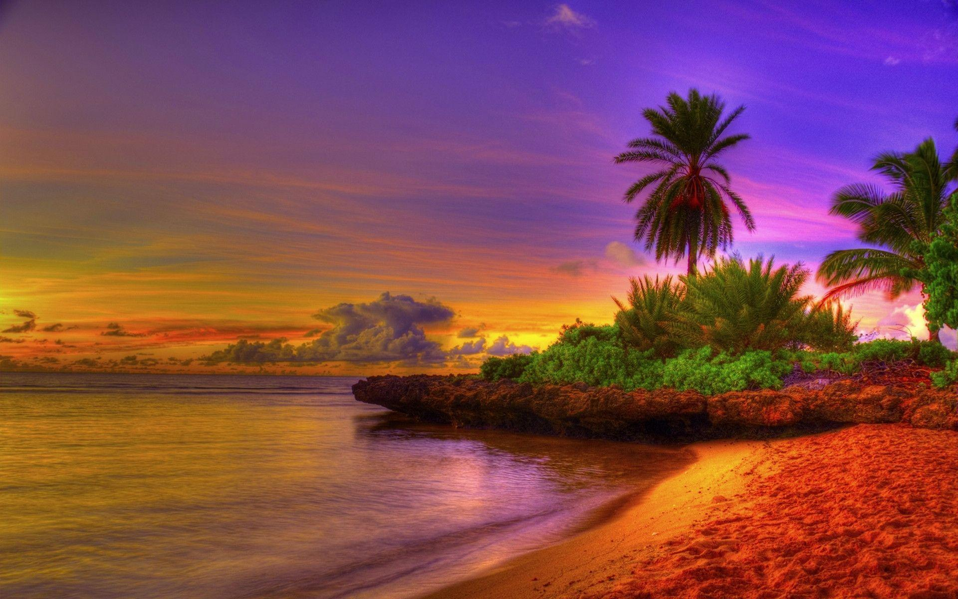 Hd Tropical Island Beach Paradise Wallpapers And Backgrounds: Tropical Beach Pictures Wallpapers
