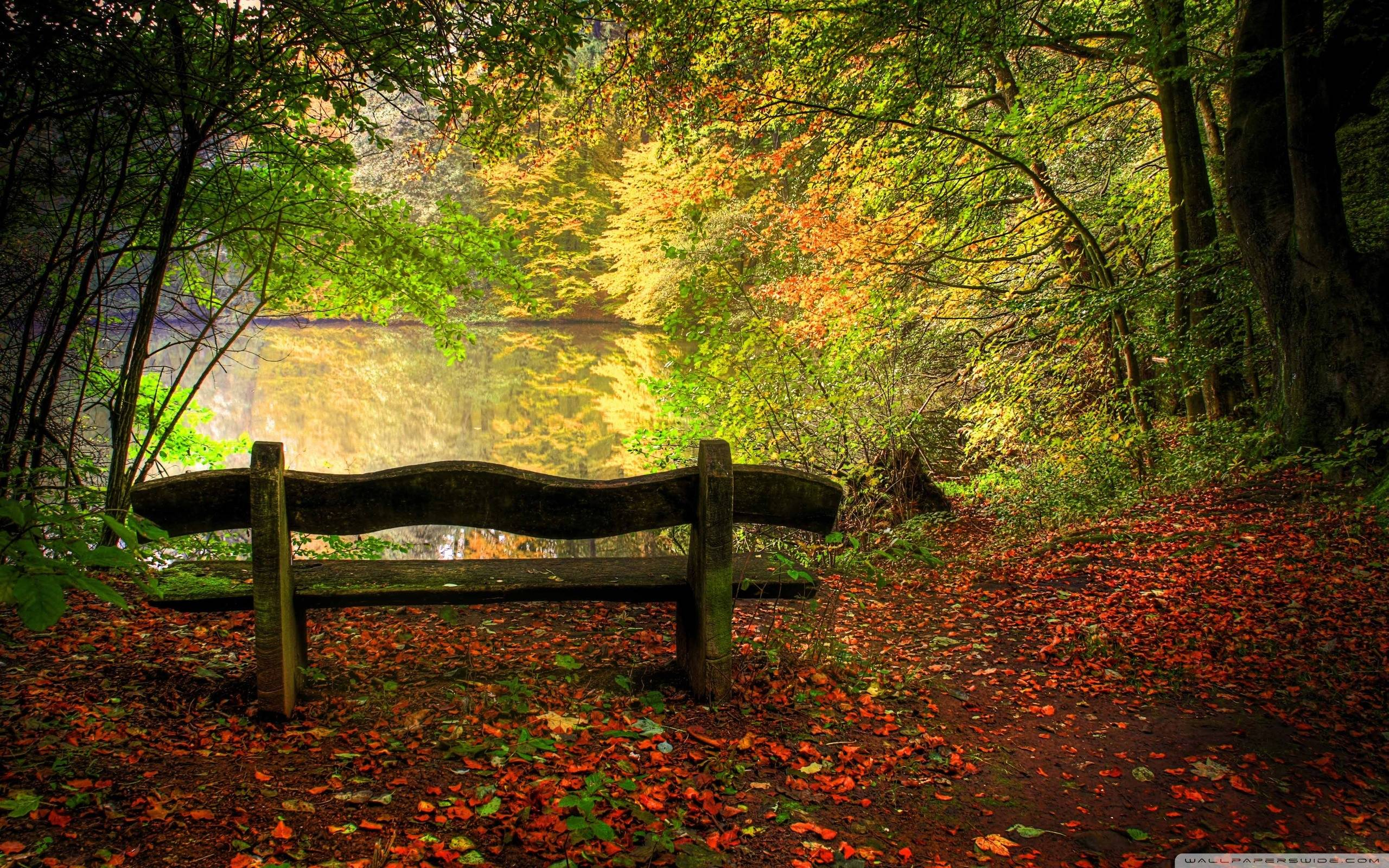 Autumn Scene Wallpapers HD Wallpapers Pulse