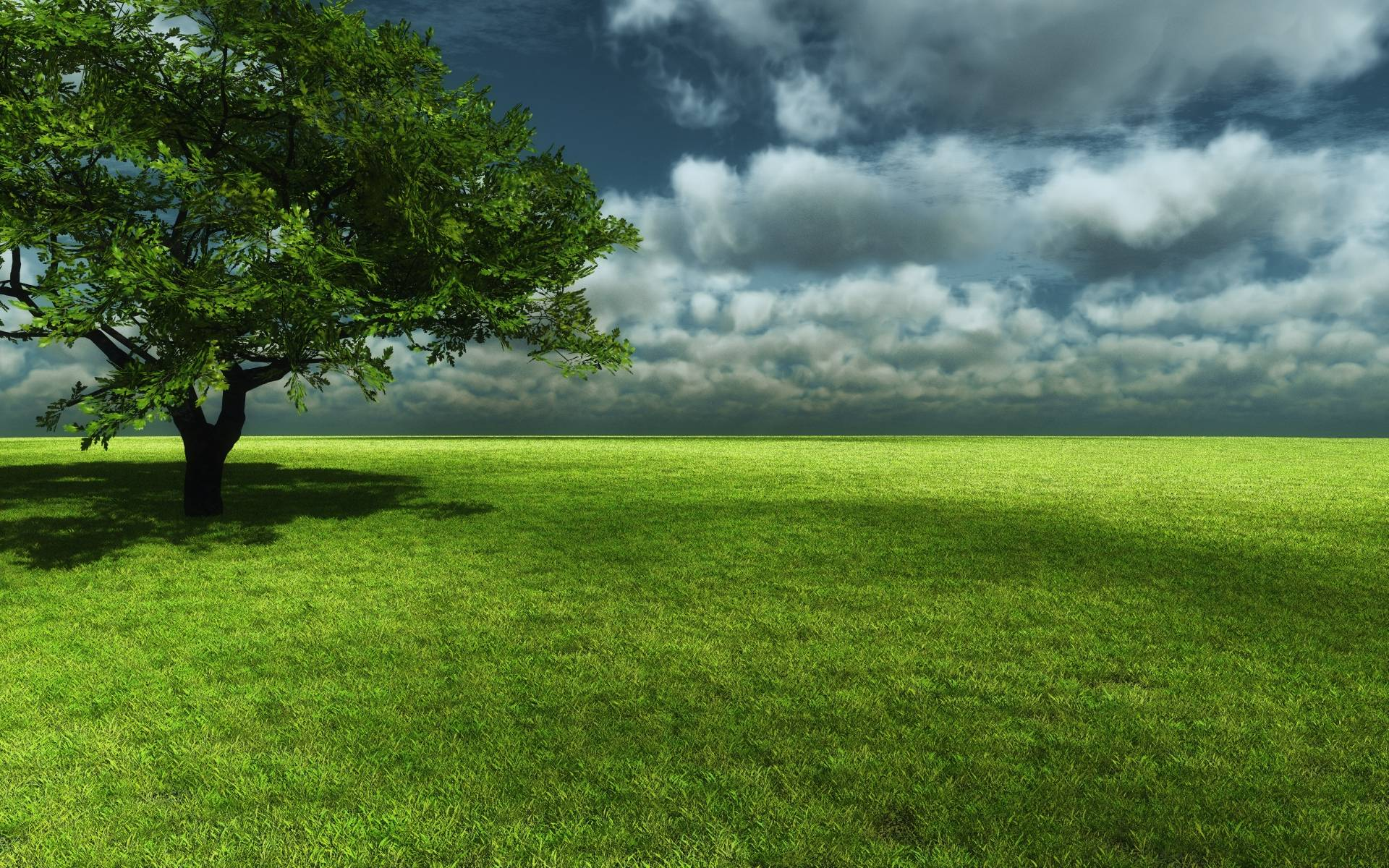 most downloaded grassland wallpapers full hd wallpaper search grass background hd a11 background