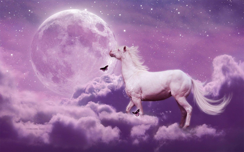 wallpaper horse sky belmont - photo #15