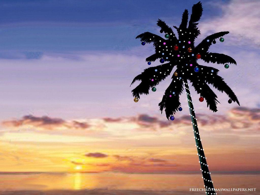 palm tree christmas lights wallpaper - photo #1