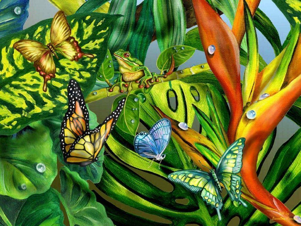 rainforest butterfly wallpaper - photo #19