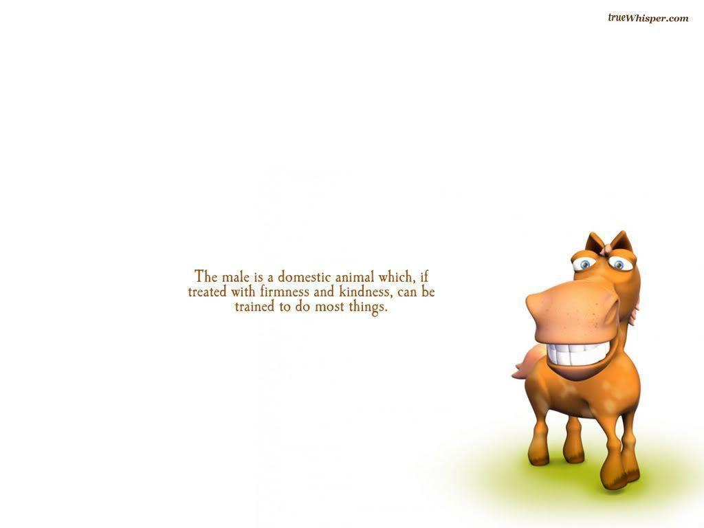 Wallpapers Funny Quote...