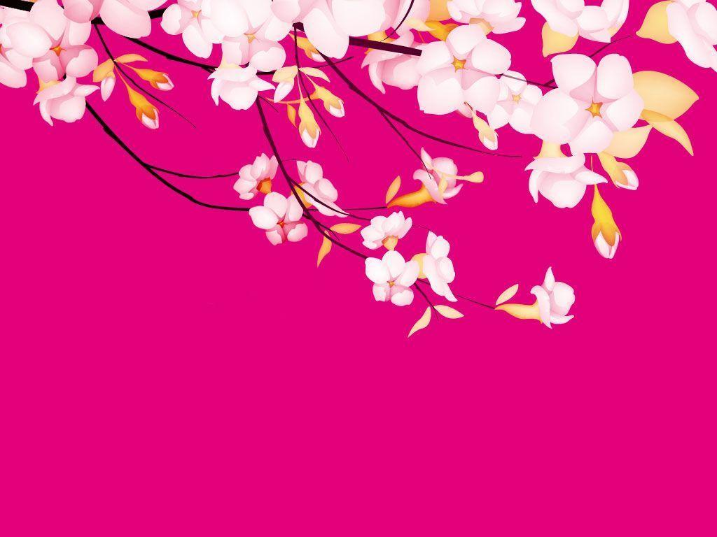Pretty In Pink Wallpapers - Wallpaper Cave
