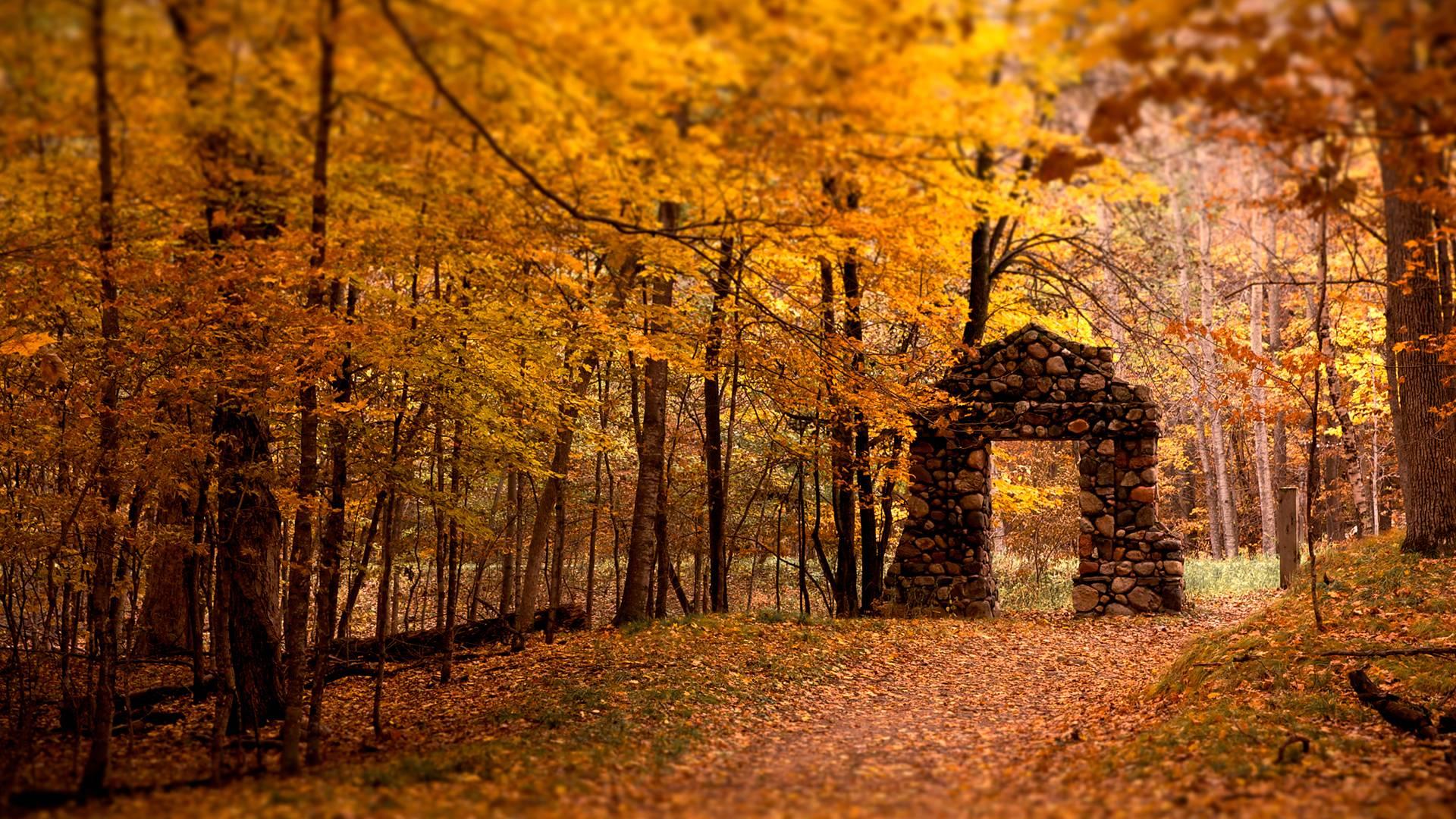 اروع صور من الطبيعة Best Nature Wallpapers EGBMe7F