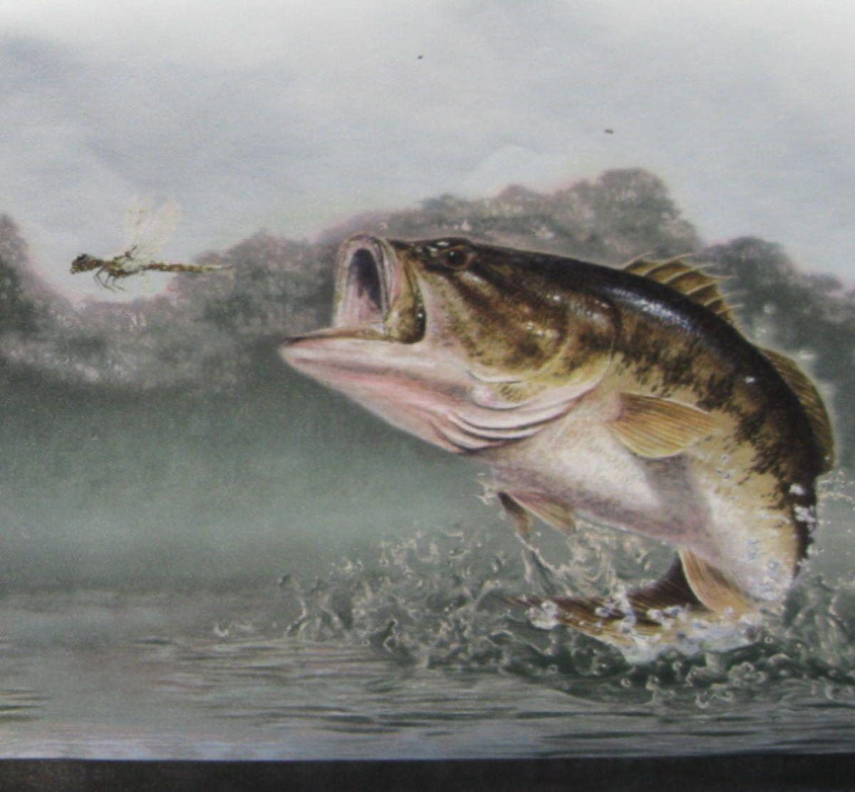 Free largemouth bass wallpapers wallpaper cave for Bass fish images