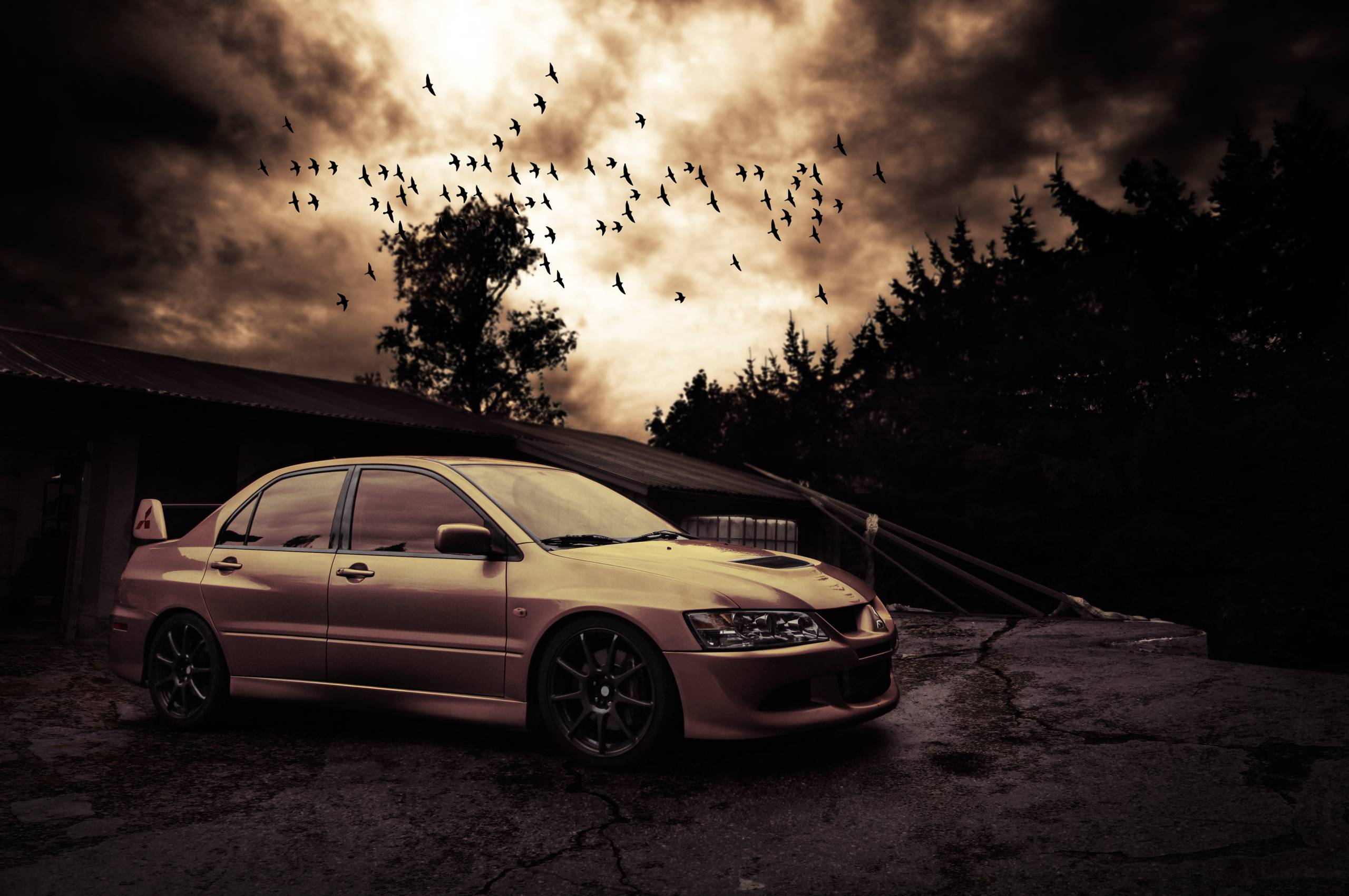 Wallpapers mitsubishi lancer evo viii, birds, evening