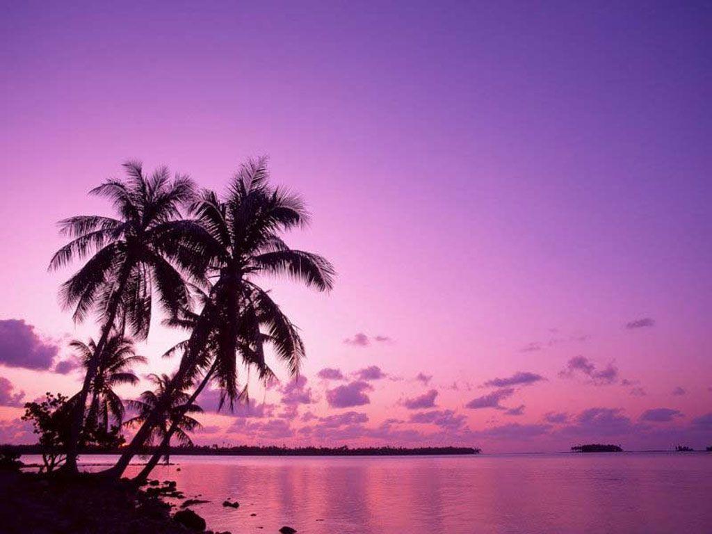 Hd Tropical Island Beach Paradise Wallpapers And Backgrounds: Tropical Island Sunset Wallpapers