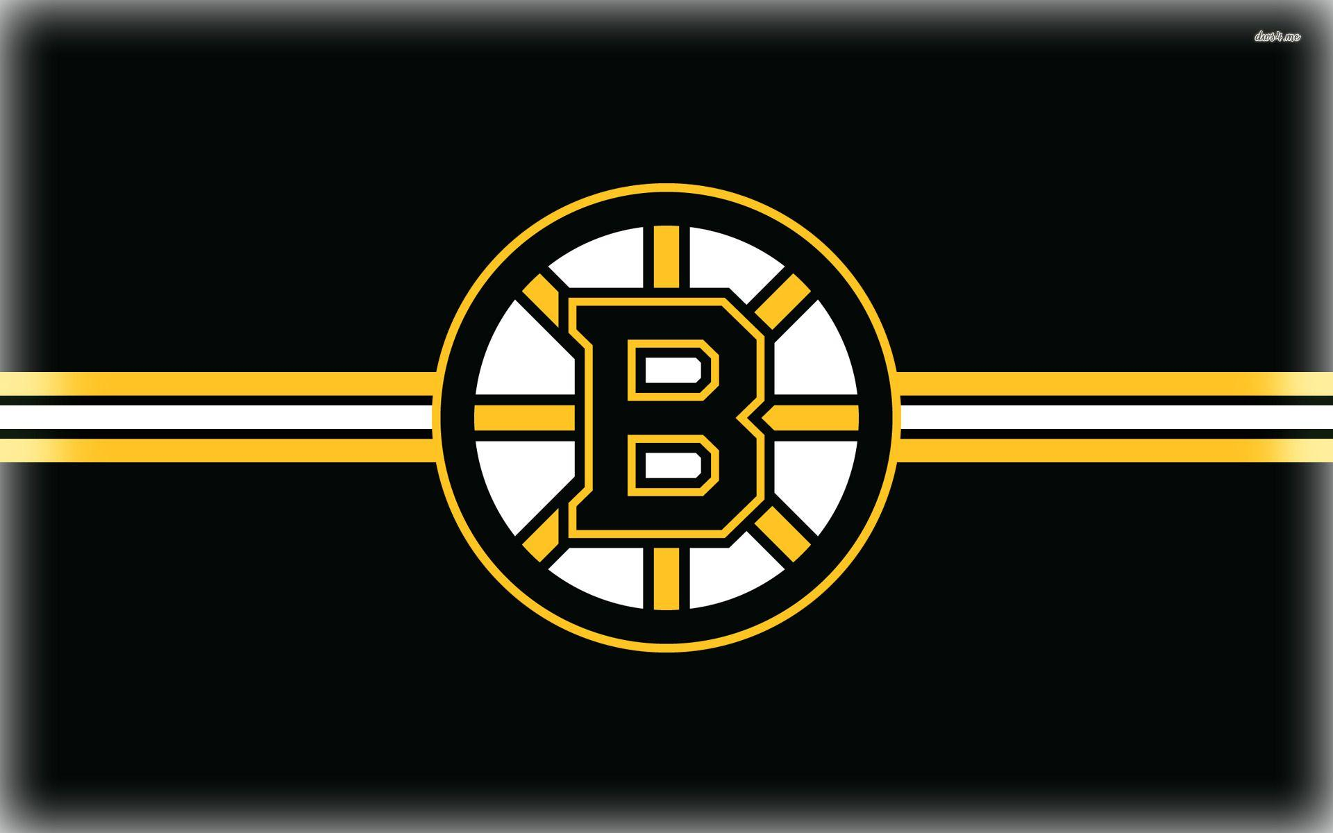 bruins - photo #9