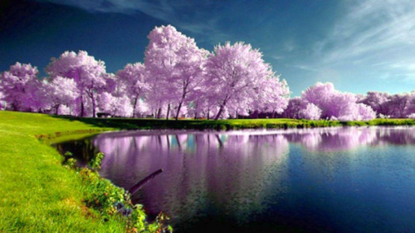 Spring HD Wallpapers | fbpapa.