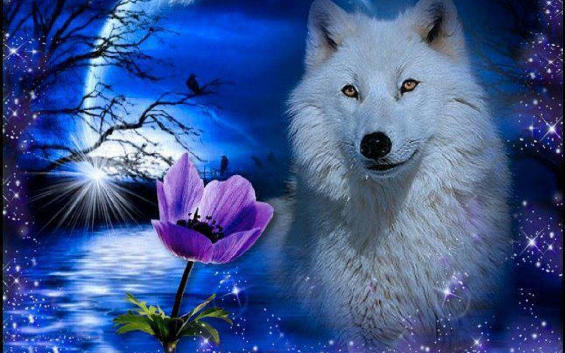 Image For > White Wolf Wallpapers Hd