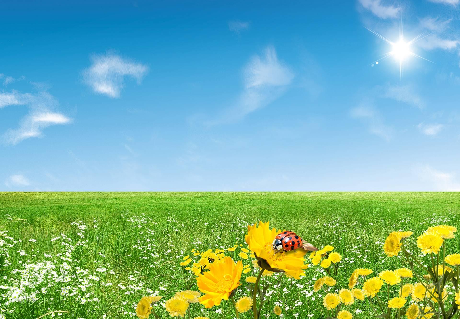 Free desktop backgrounds for spring wallpaper cave - Backgrounds springtime ...