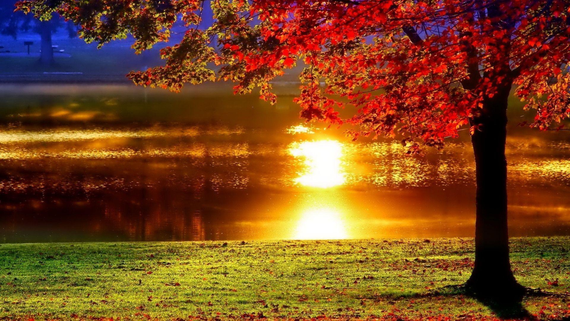 LAKESIDE SUNSET REFLECTION Desktop Background | Desktop Backgrounds HQ