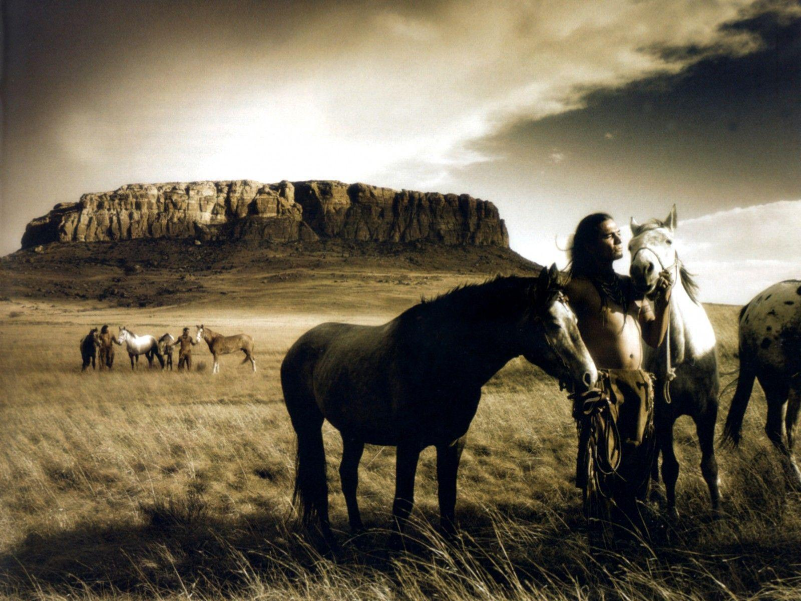 wild horses racing wallpaper - photo #14