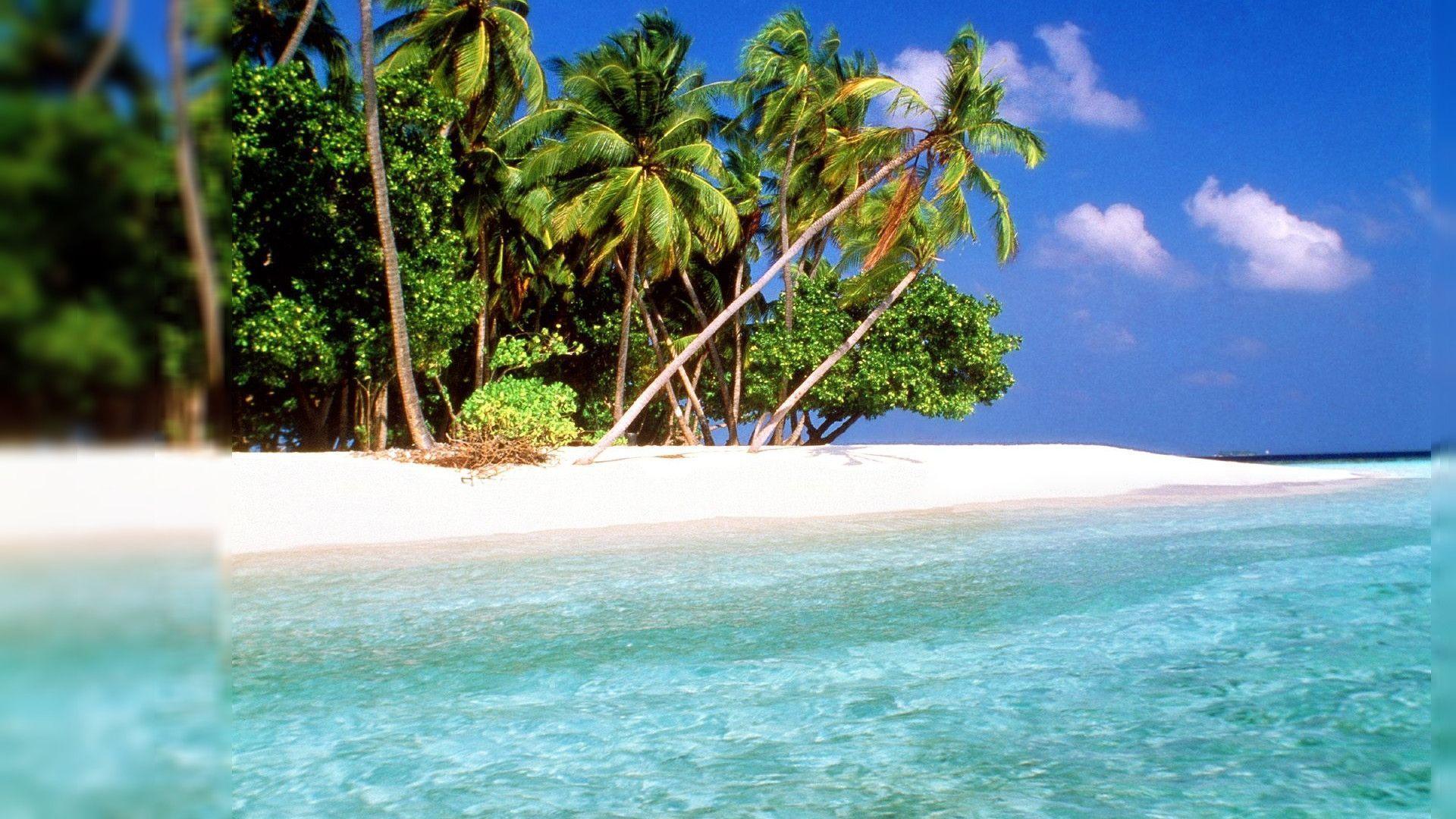 Hd Tropical Island Beach Paradise Wallpapers And Backgrounds: Tropical Wallpapers Desktop