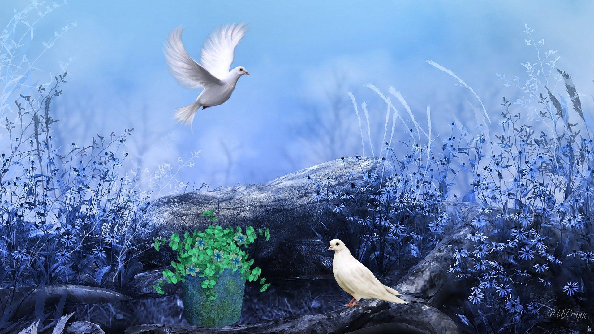 Peace wallpapers wallpaper cave - Peaceful background images ...