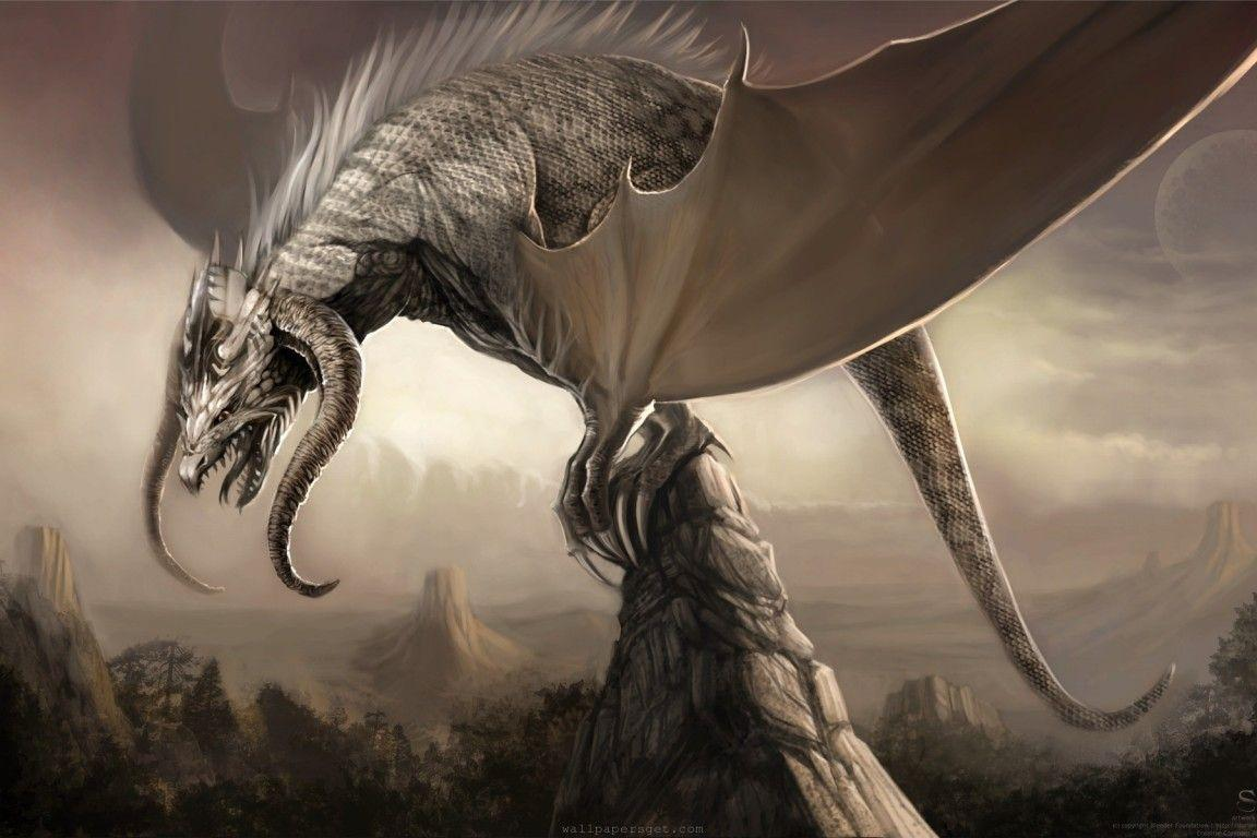 Wallpapers For > Epic Dragon Wallpapers Hd