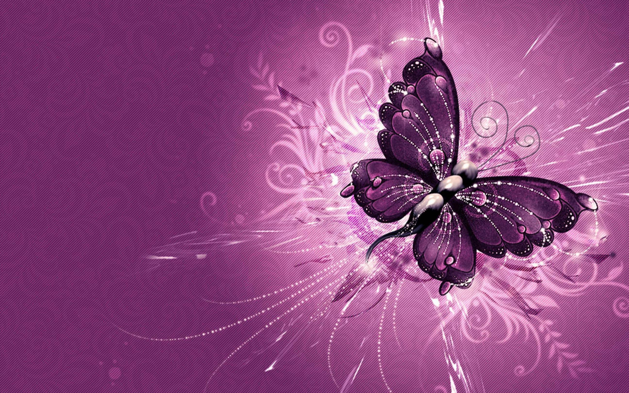 Purple Butterfly Wallpapers - Full HD wallpaper search