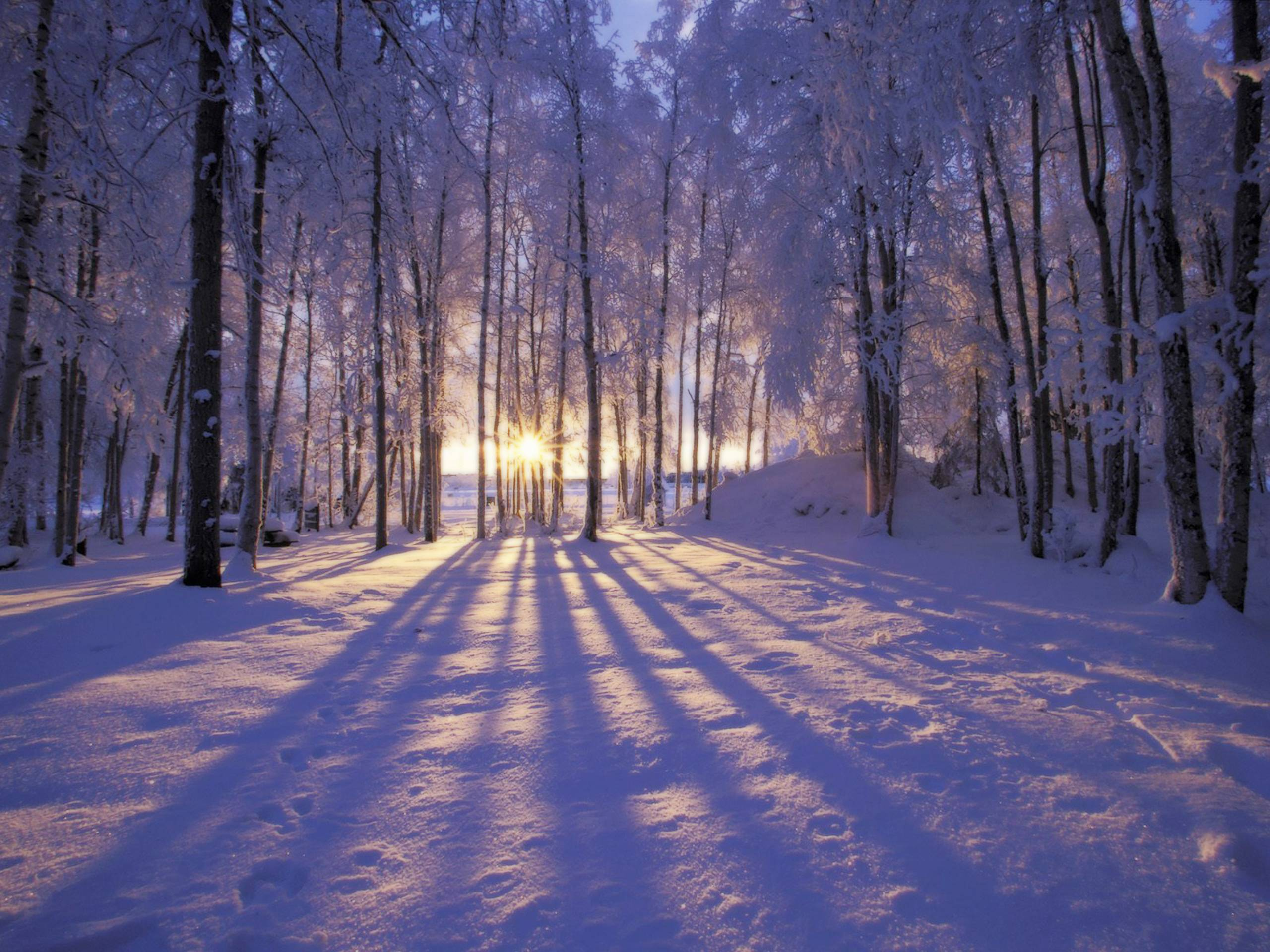 winter wallpapers scenes wallpaper cave