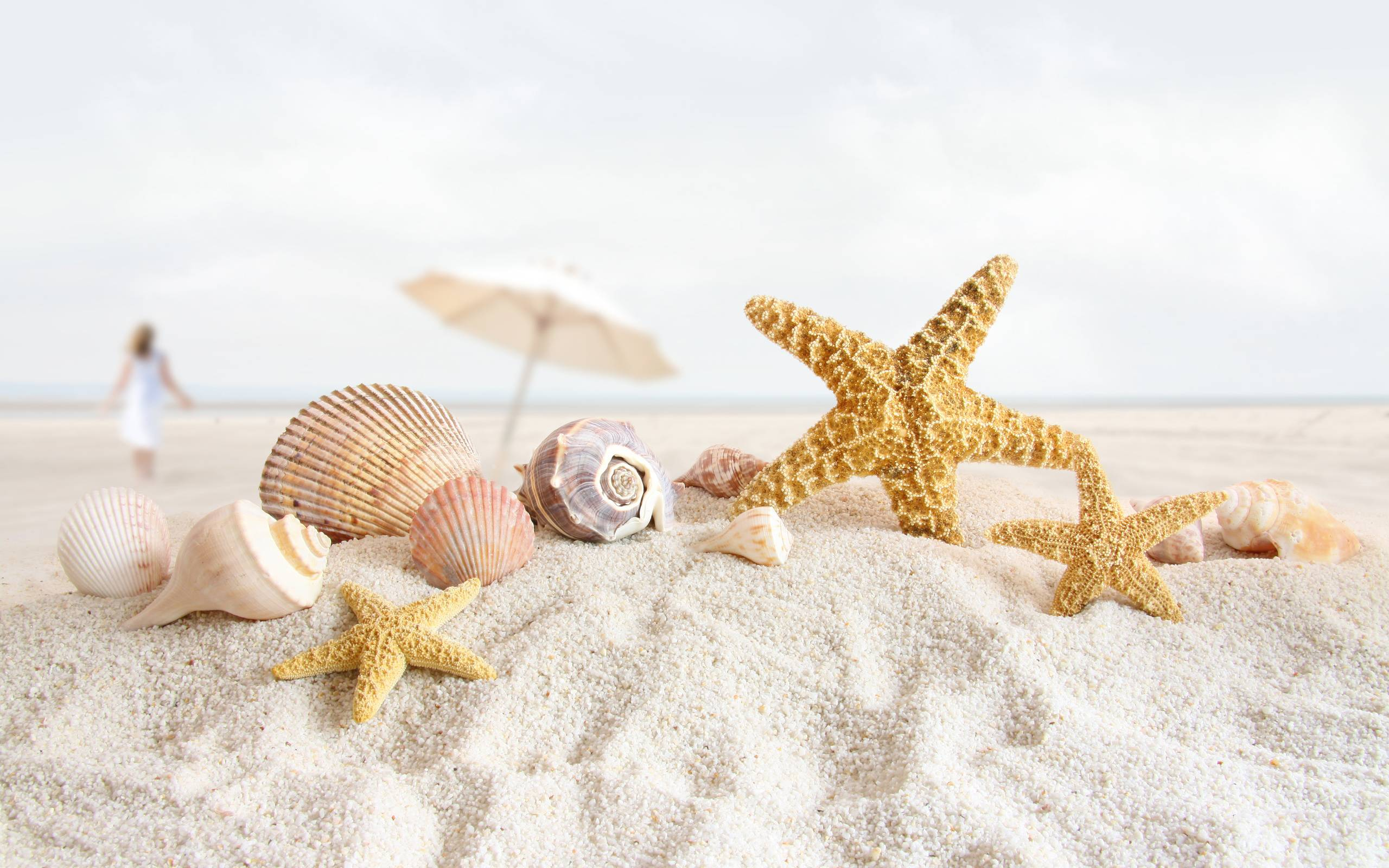 Beach Vacation Concept Blank Paper In White Sand Beach With Pearl ...