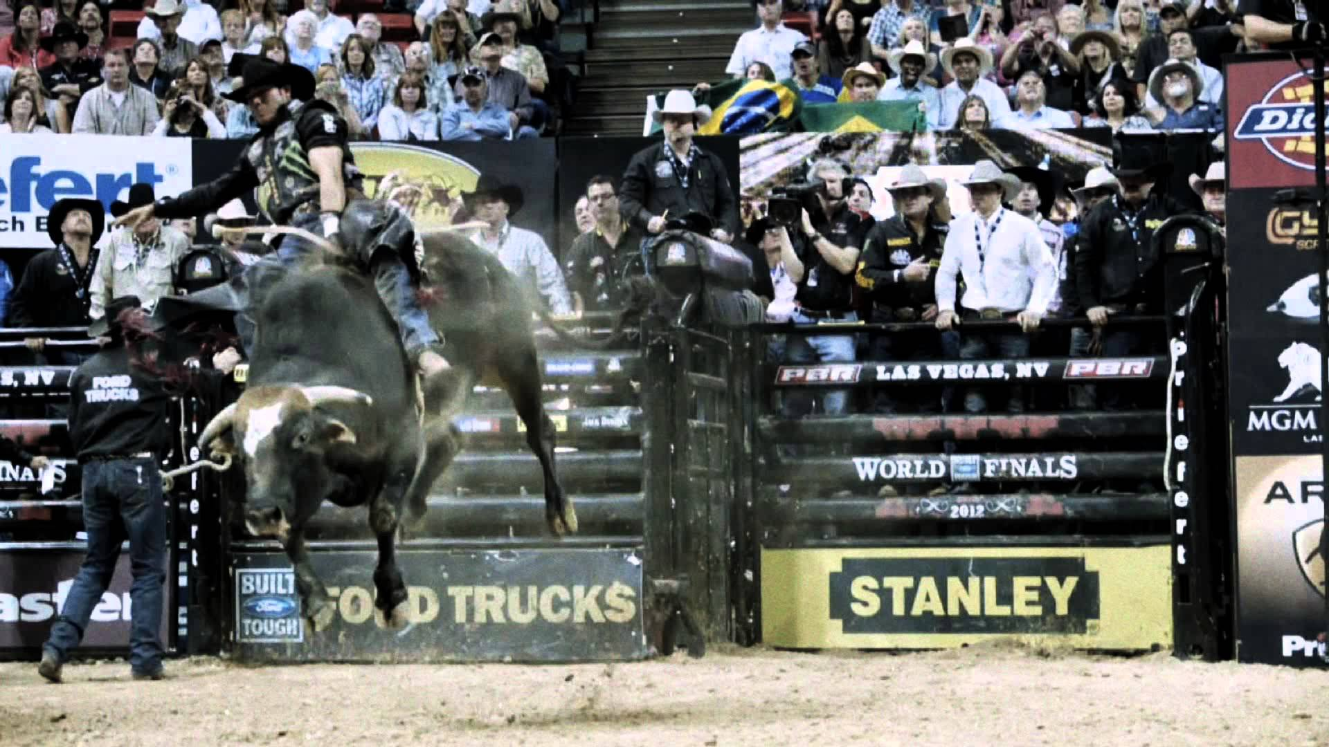 Image Result For Bull Riding Wallpapers Hd Wallpaper