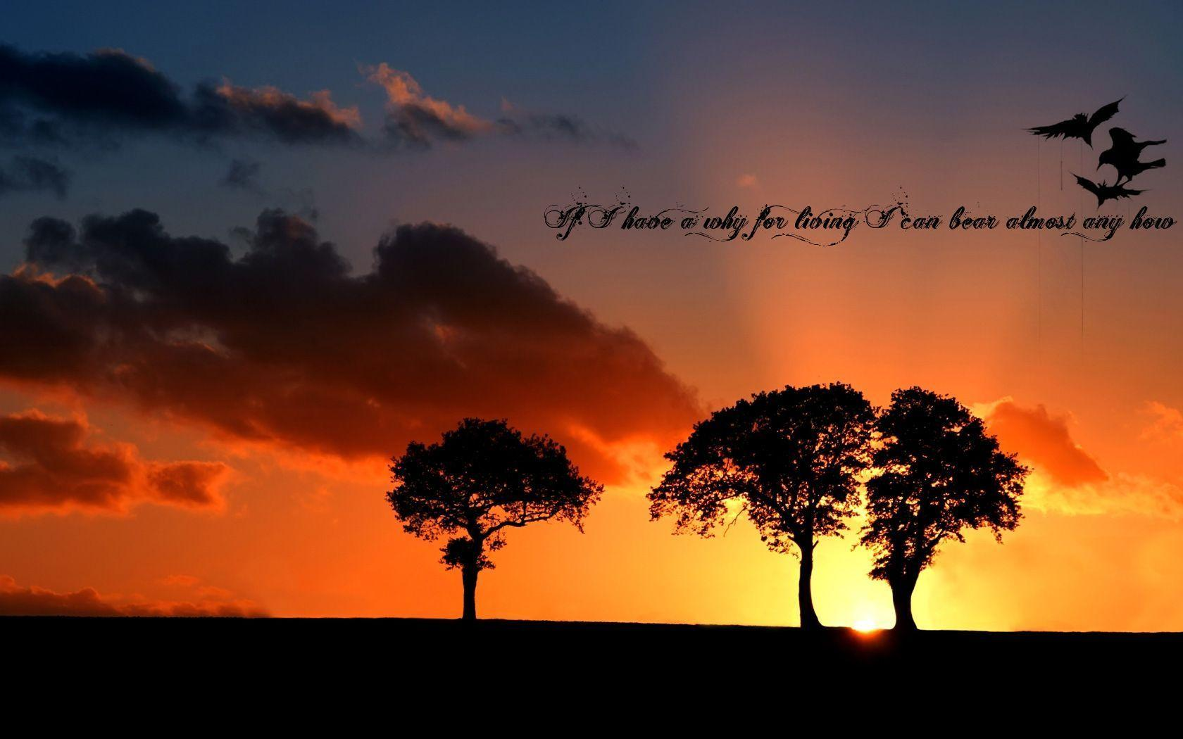 Nature Quotes Wallpaper - Viewing Gallery