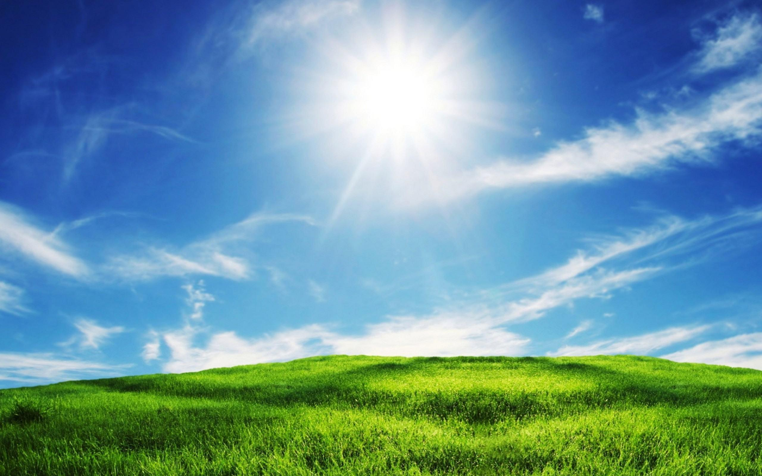 Green Grass Blue Sky Wallpapers Nature HD Wallpapers & Backgrounds