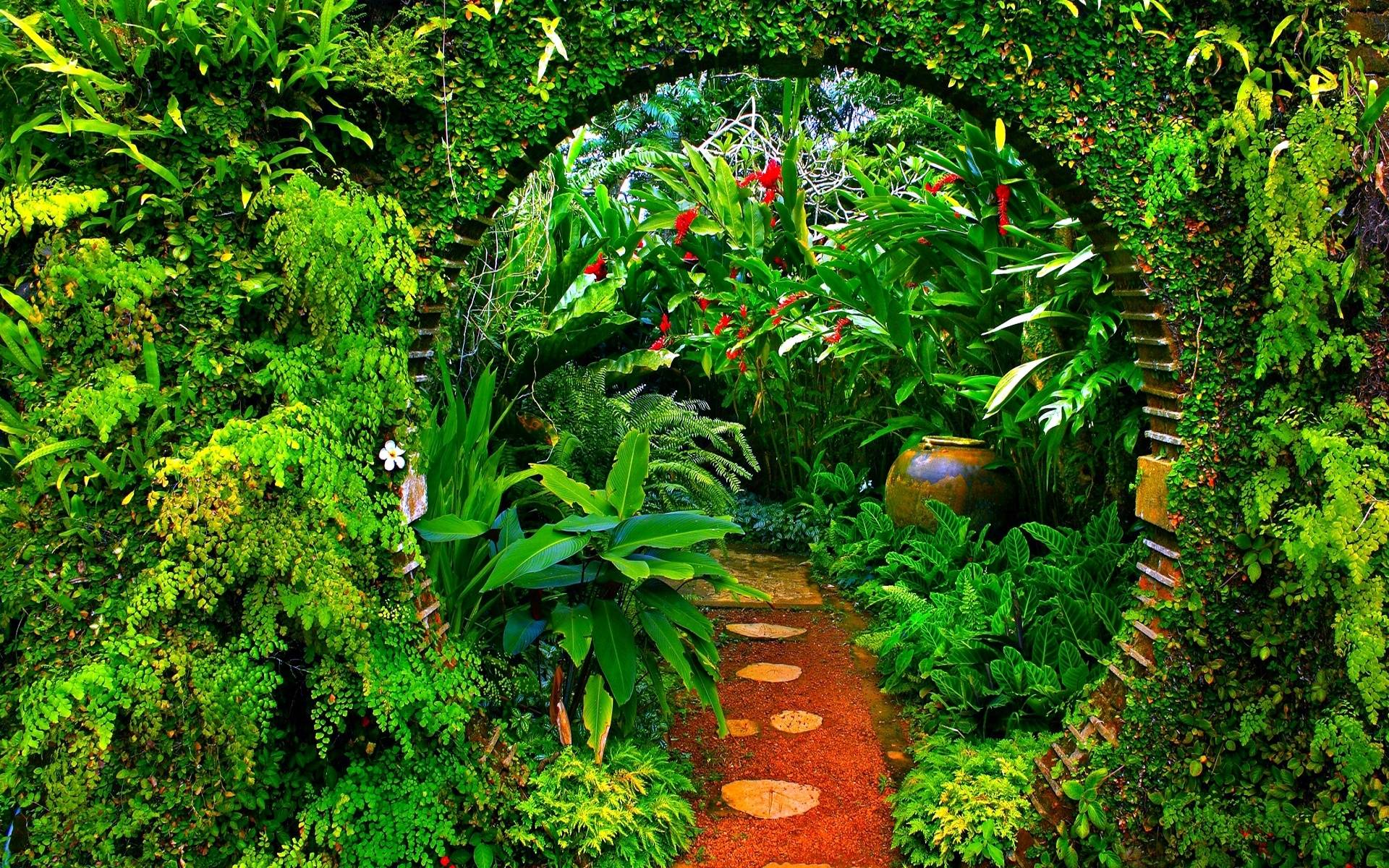 Jungle backgrounds wallpaper cave for Irish garden designs