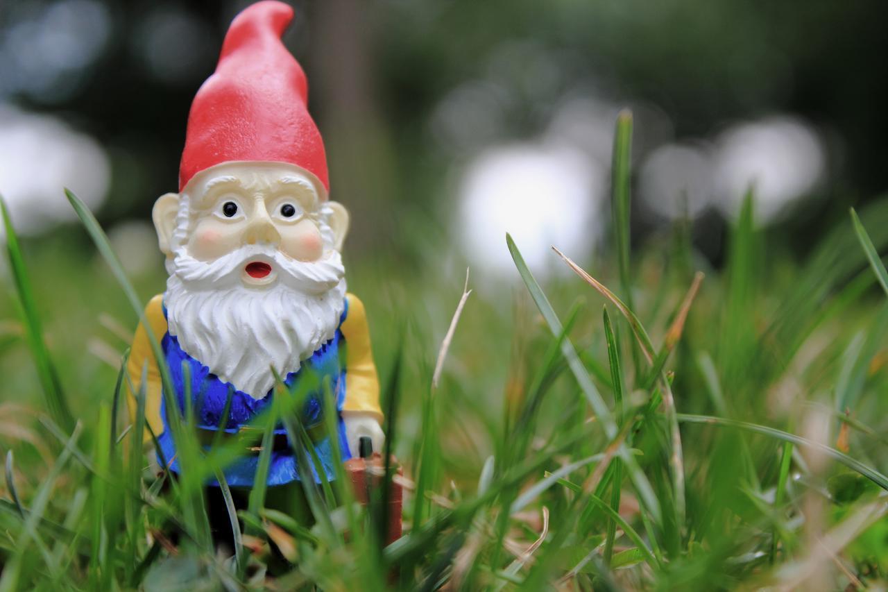 Gnome Garden: Garden Gnome Wallpapers