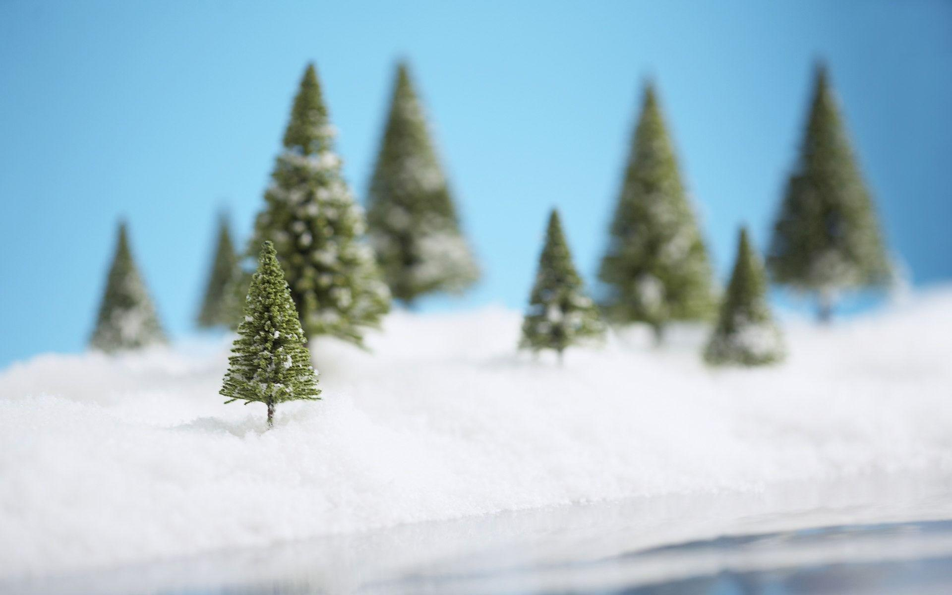 Christmas snow scene with a Christmas tree wallpapers