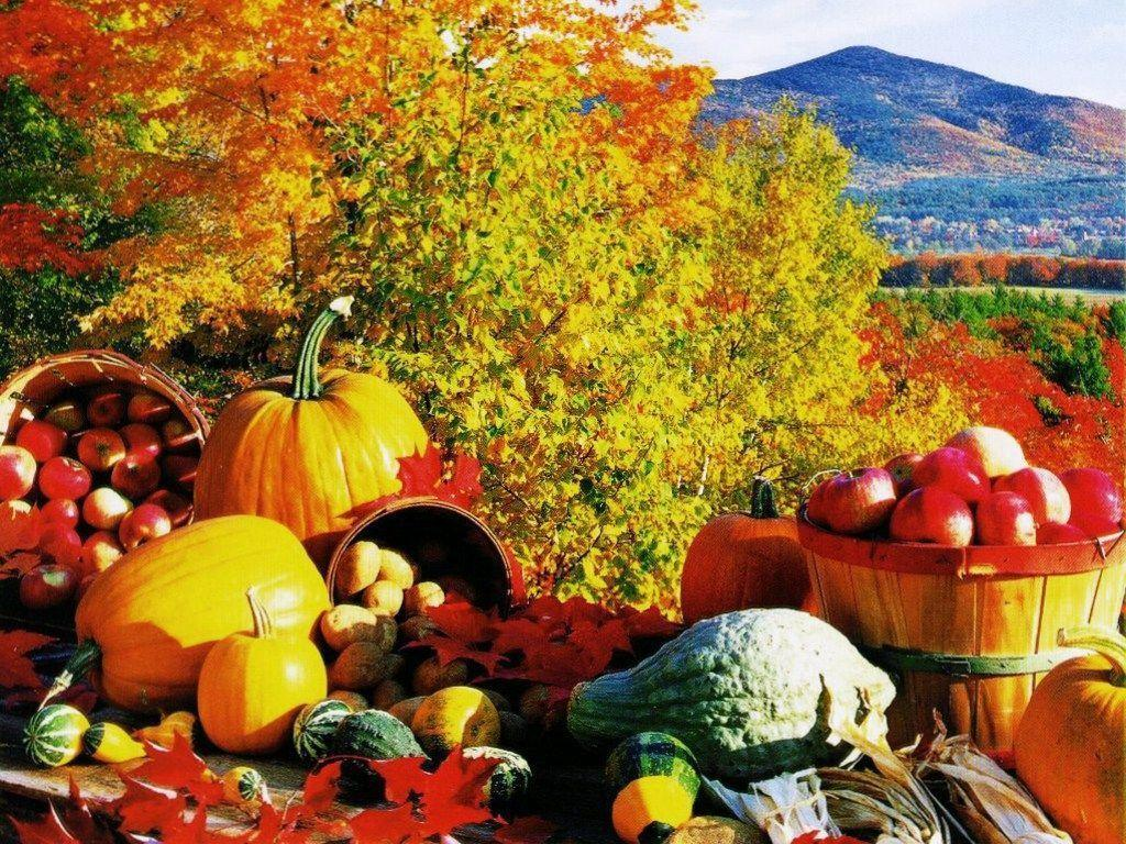 Fall Harvest... Harvest Background Pictures