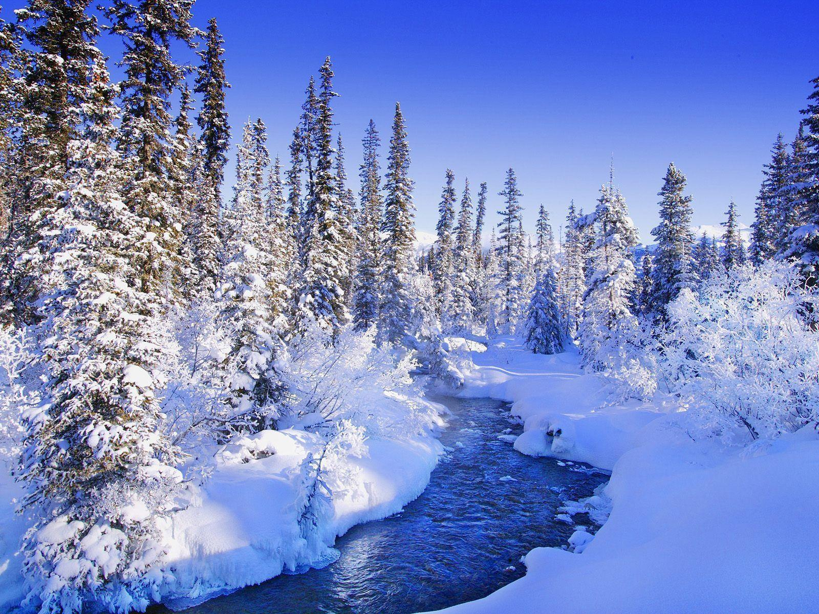 Winter Screensavers 9 Backgrounds