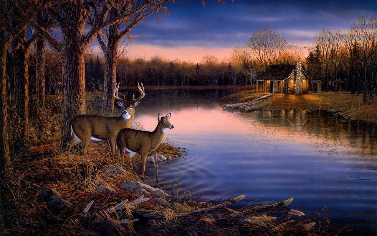 deer wallpaper for my desktop - photo #20
