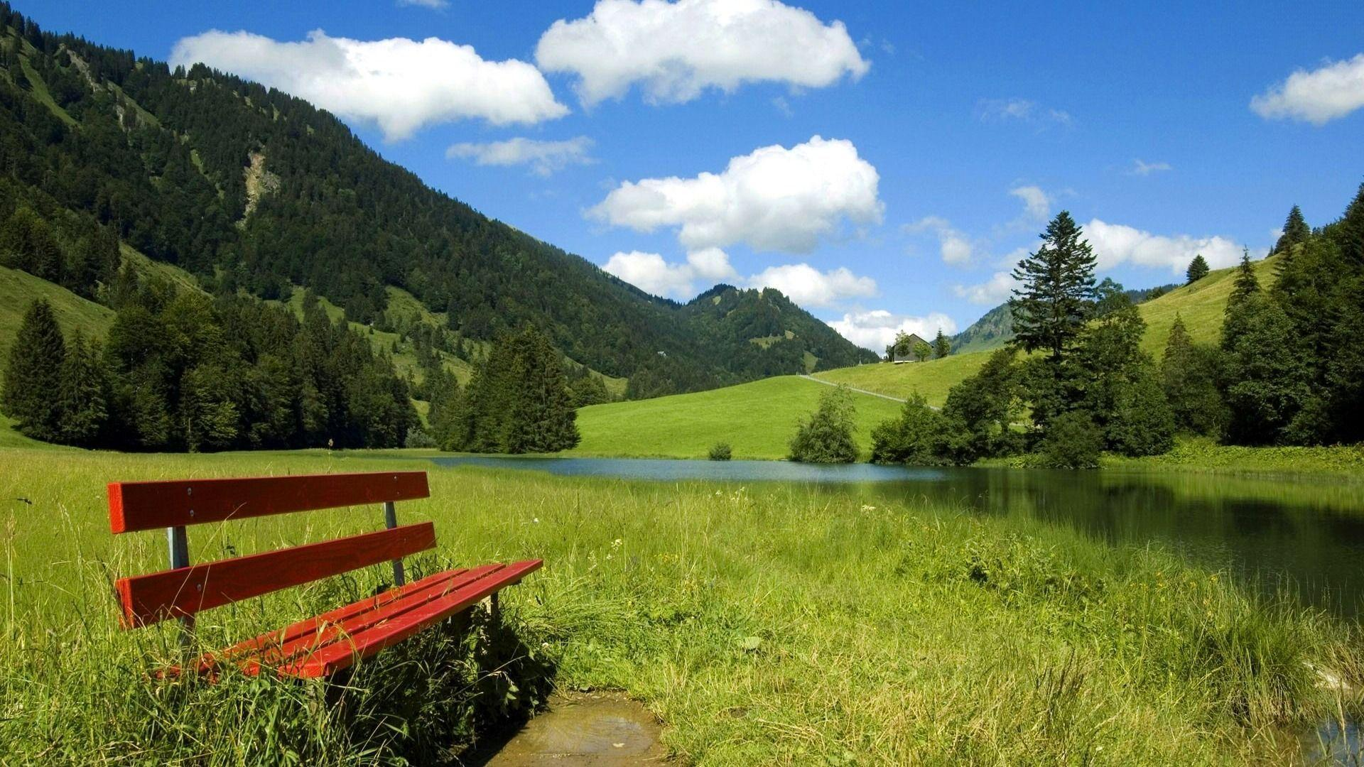 Photo Bench in country field Beauty of Nature