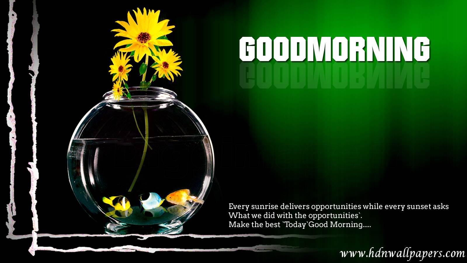 Good Morning New Wallpapers Free Download For Laptop