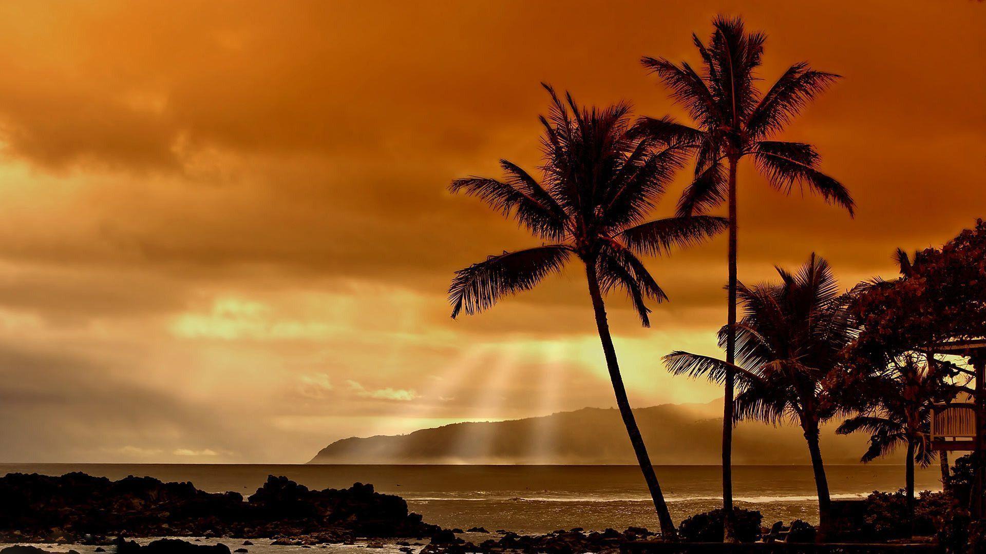 Hawaiian Sunset HD Wallpaper