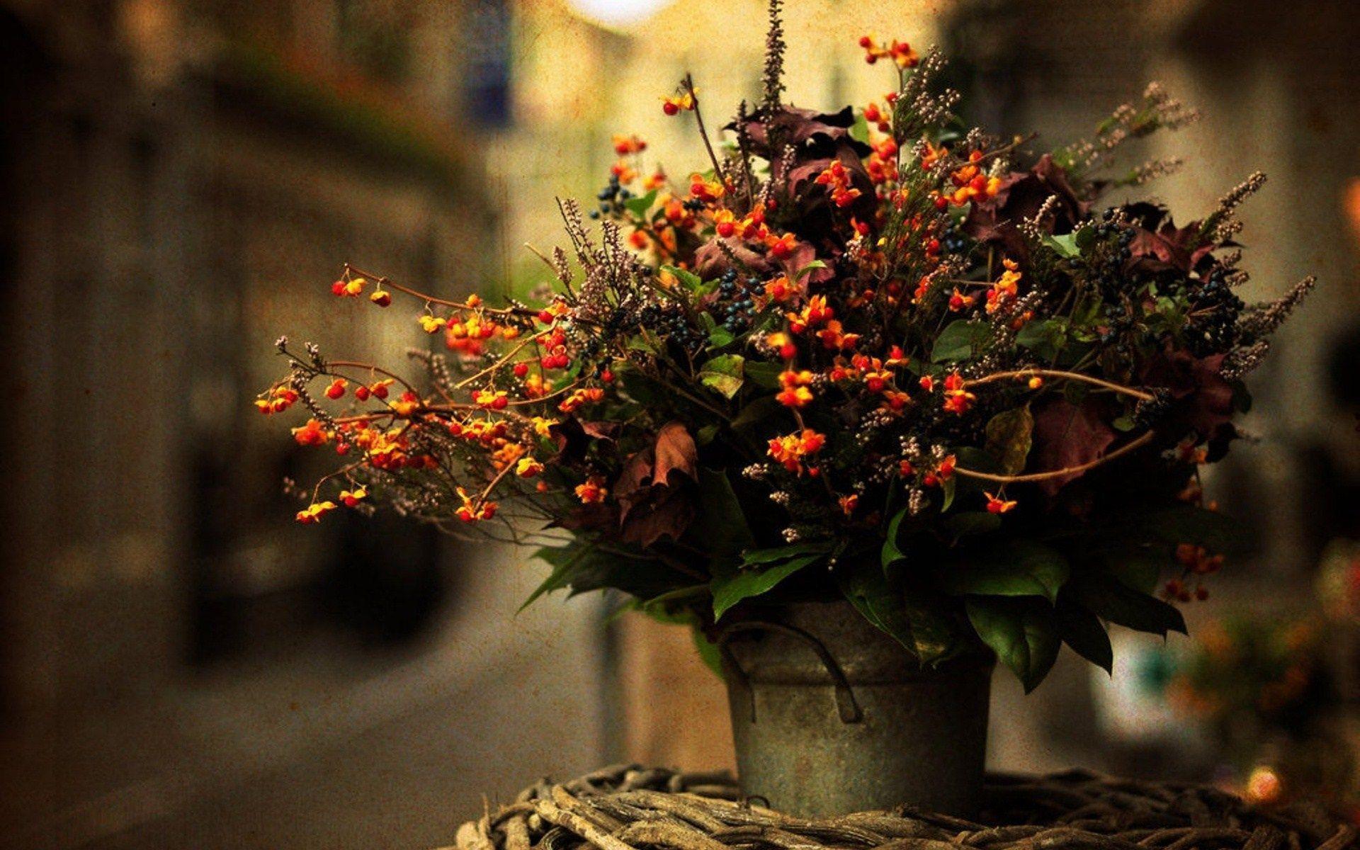 beautiful green fall flower - photo #26