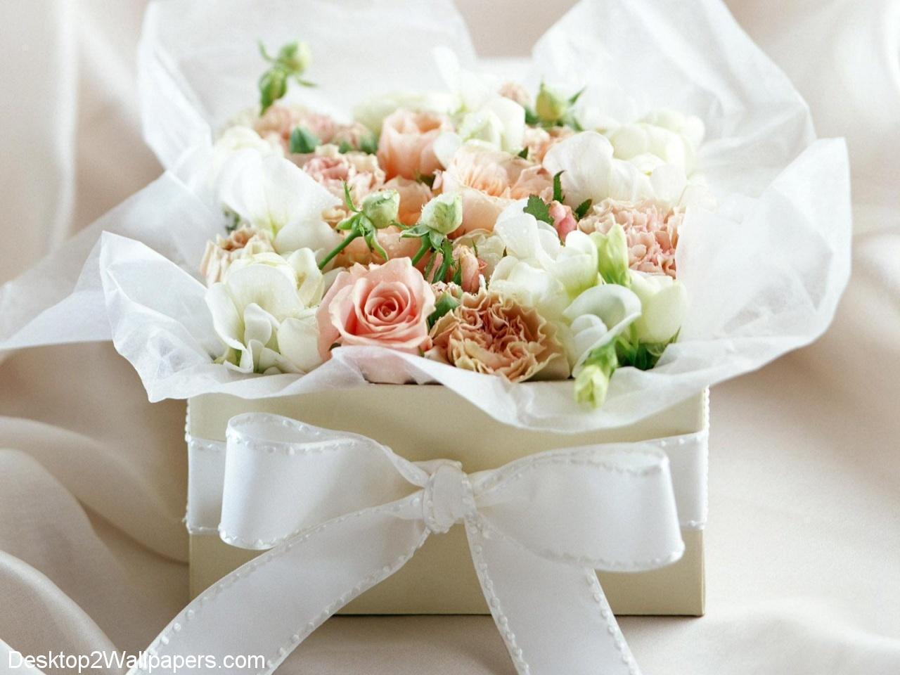 White rose wallpaper free flowers hd desktop wallpapers at - Buubi.Com