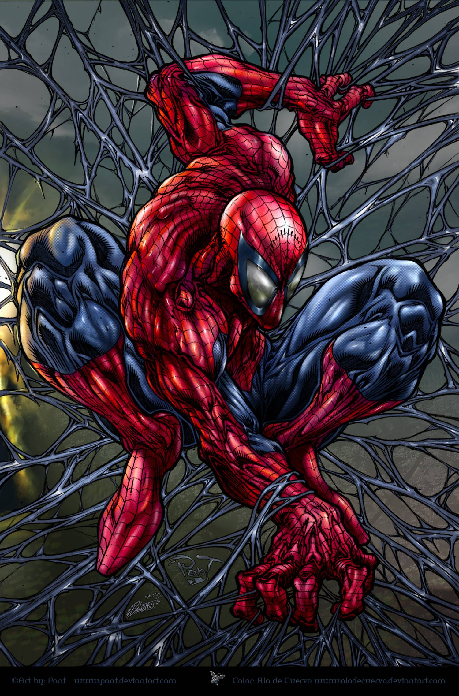 Spider-Man Cartoon Wallpapers - Wallpaper Cave