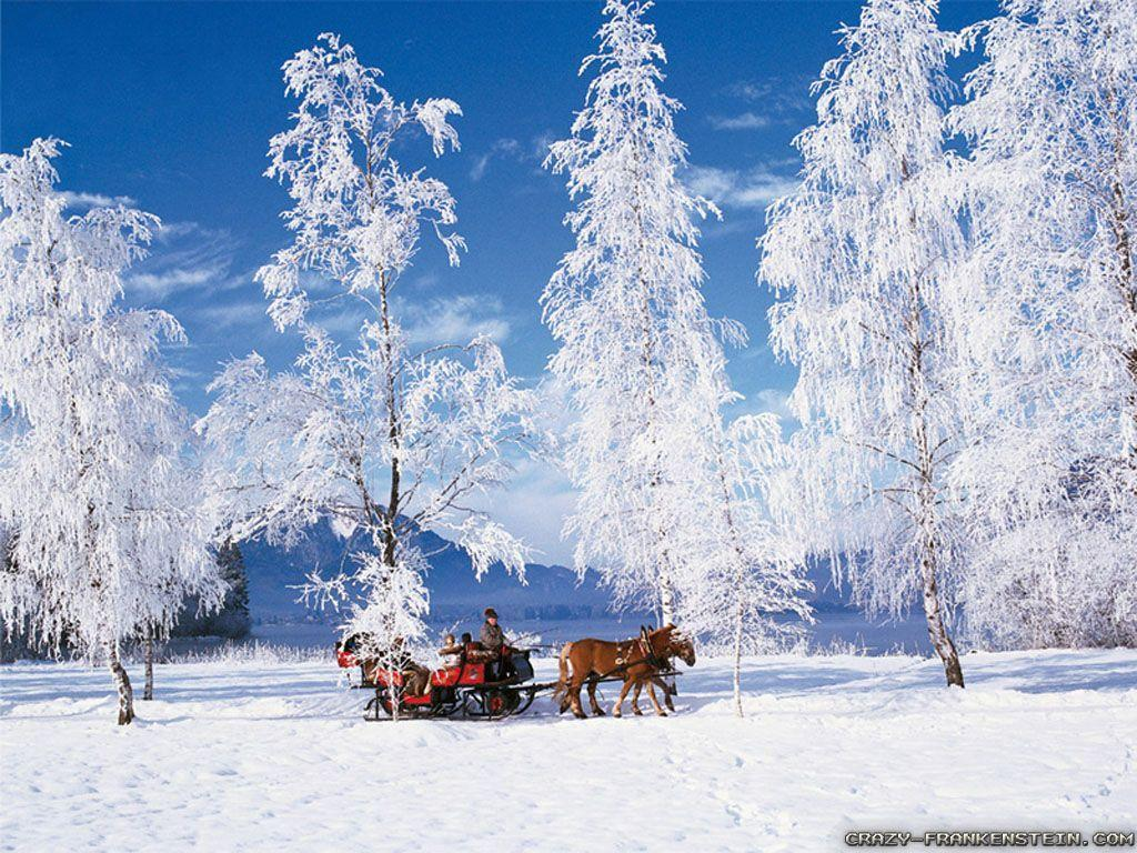 winter scene wallpapers free wallpaper cave
