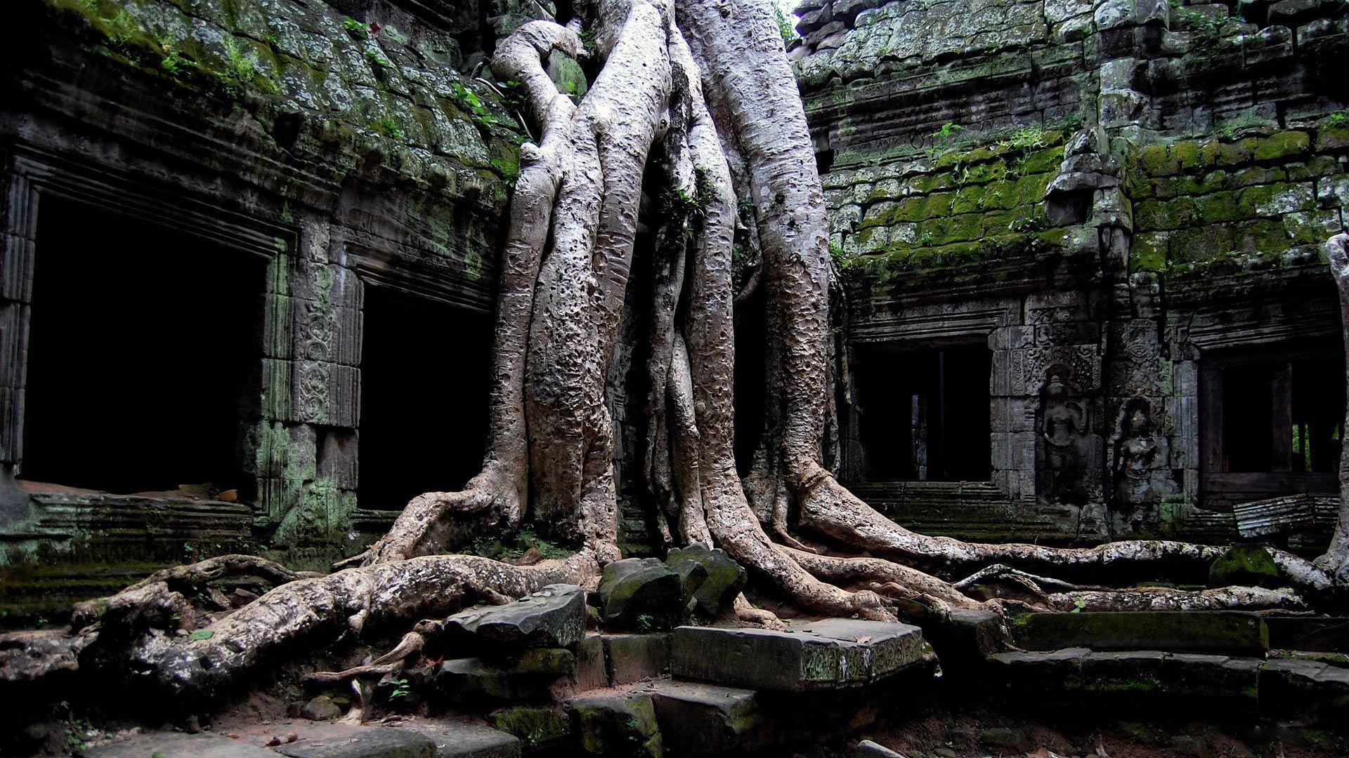 Desktop Wallpaper · Gallery · Nature · Temple Buddha | Free ...