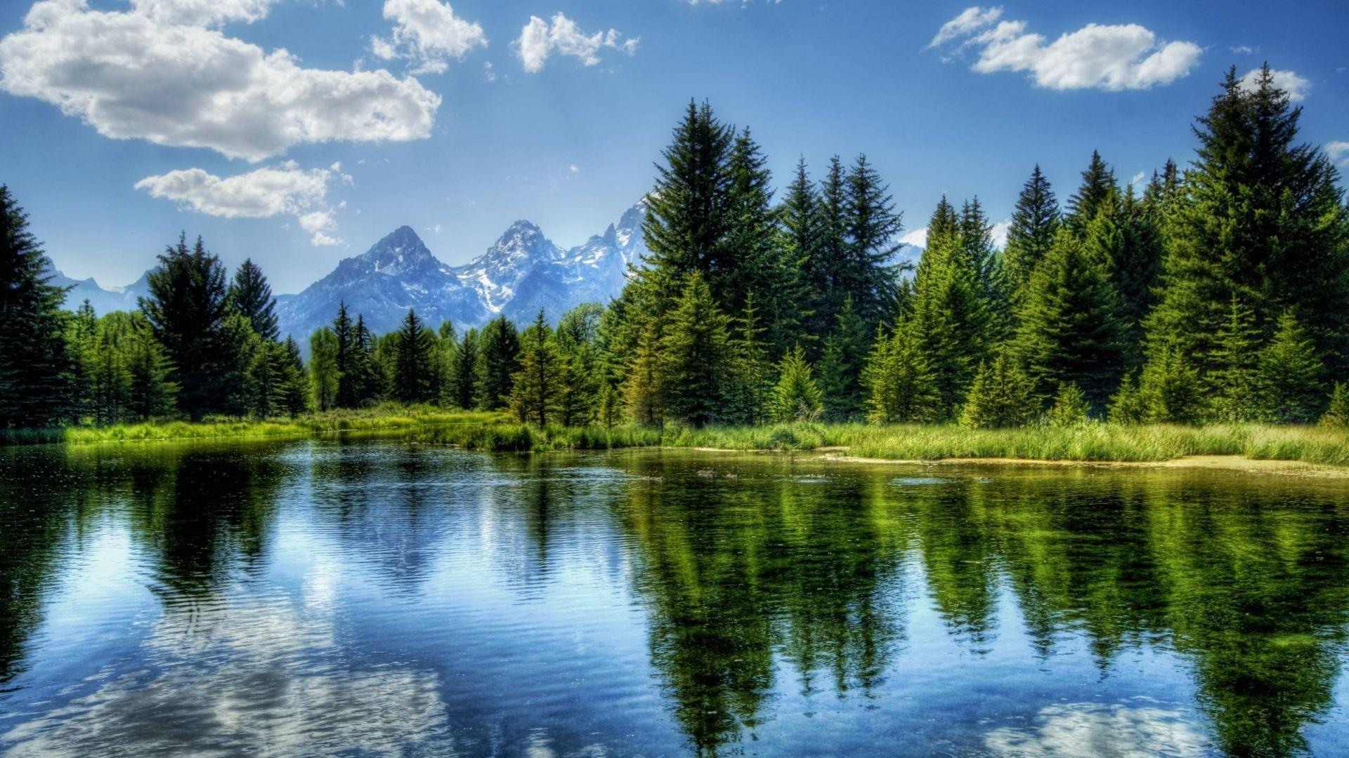 Download Wallpapers 1920x1080 lake, mountain, tree, water