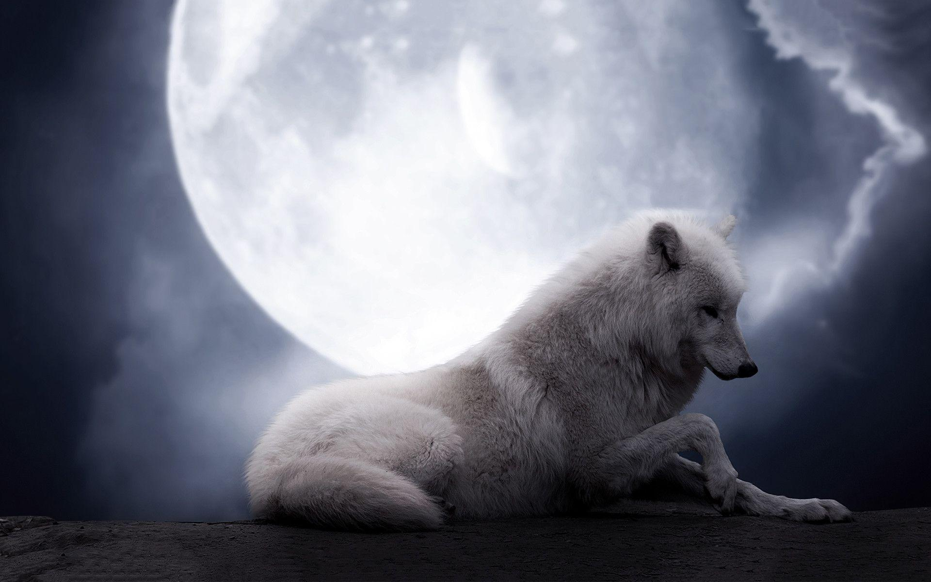 Wolf Moon Wallpapers