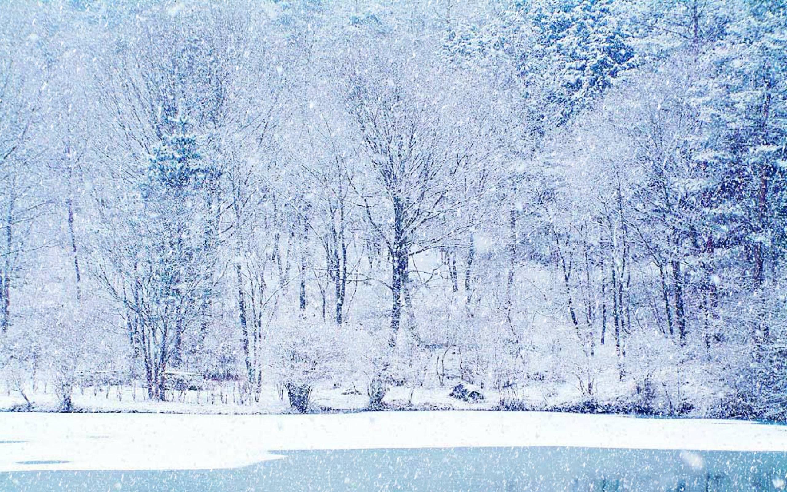 Winter Scene Backgrounds - Wallpaper Cave