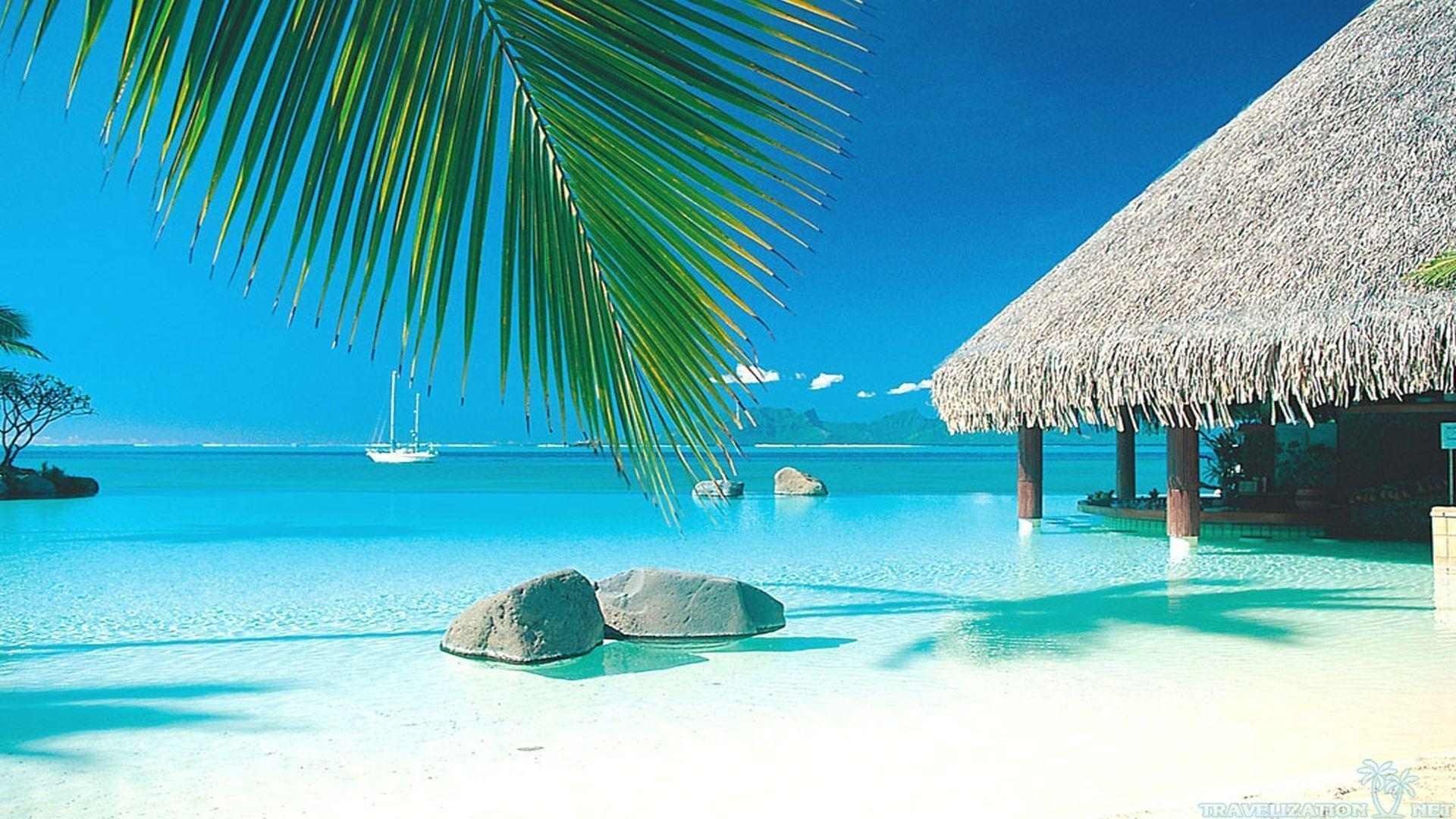 tropical paradise wallpaper - photo #19